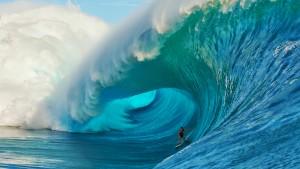 the SEO wave
